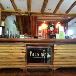 PALO ALTO Bed & Breakfast Palawan: Great Hotel, Real Forest In The Middle Of The City