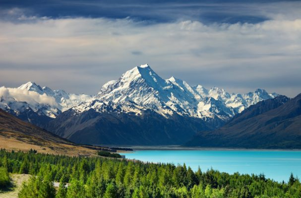 Why You Should Travel To New Zealand With A Small Group