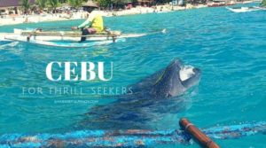 4 Activities in Cebu For Thrill-Seekers